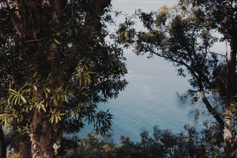 Waipiʻo Valley Lookout